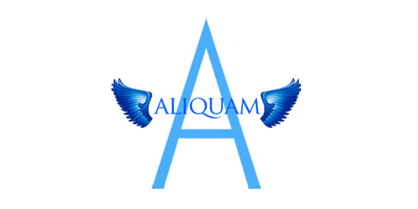logobigaliquam